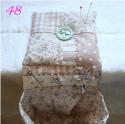 48-coccinelle