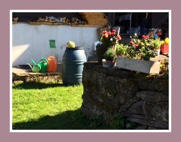 chalet jardin 2